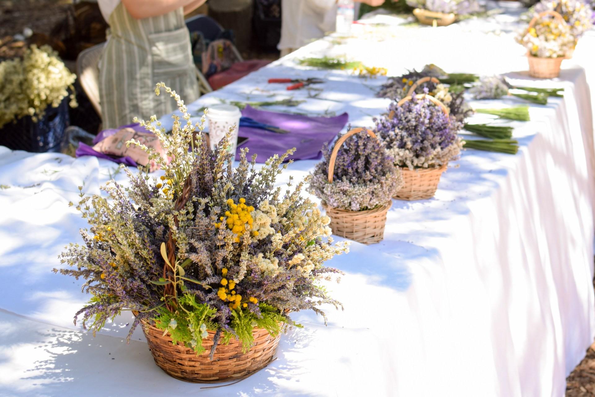 Odyssey Designs Lavender Festival 2017_-3