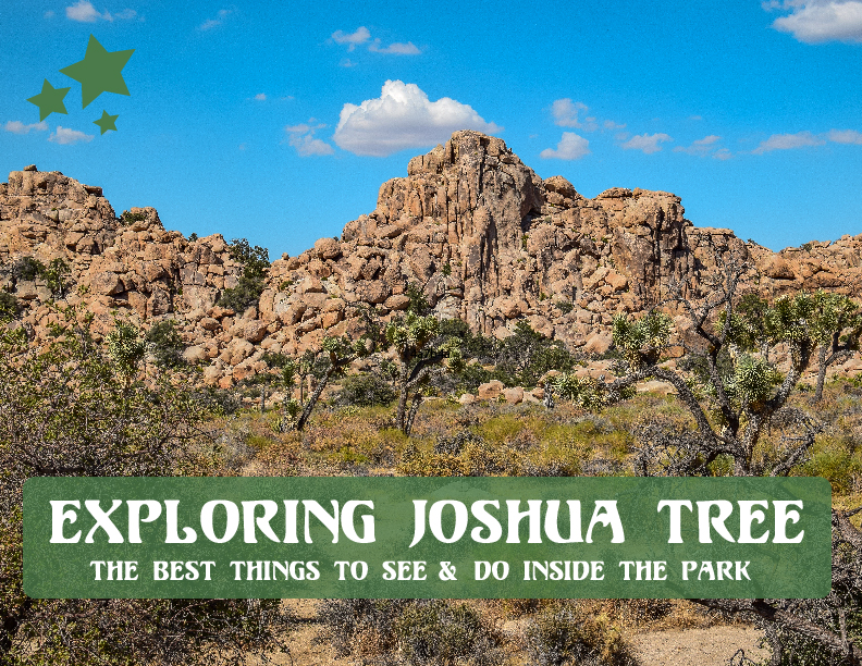 A Guide to Exploring Joshua Tree by Odyssey Designs