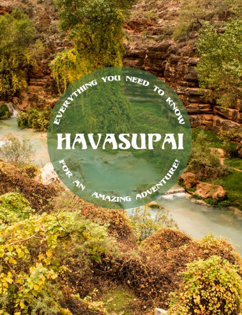 Everything you need to know for an amazing adventure in Havasupai Arizona! A guide by Odyssey Designs!