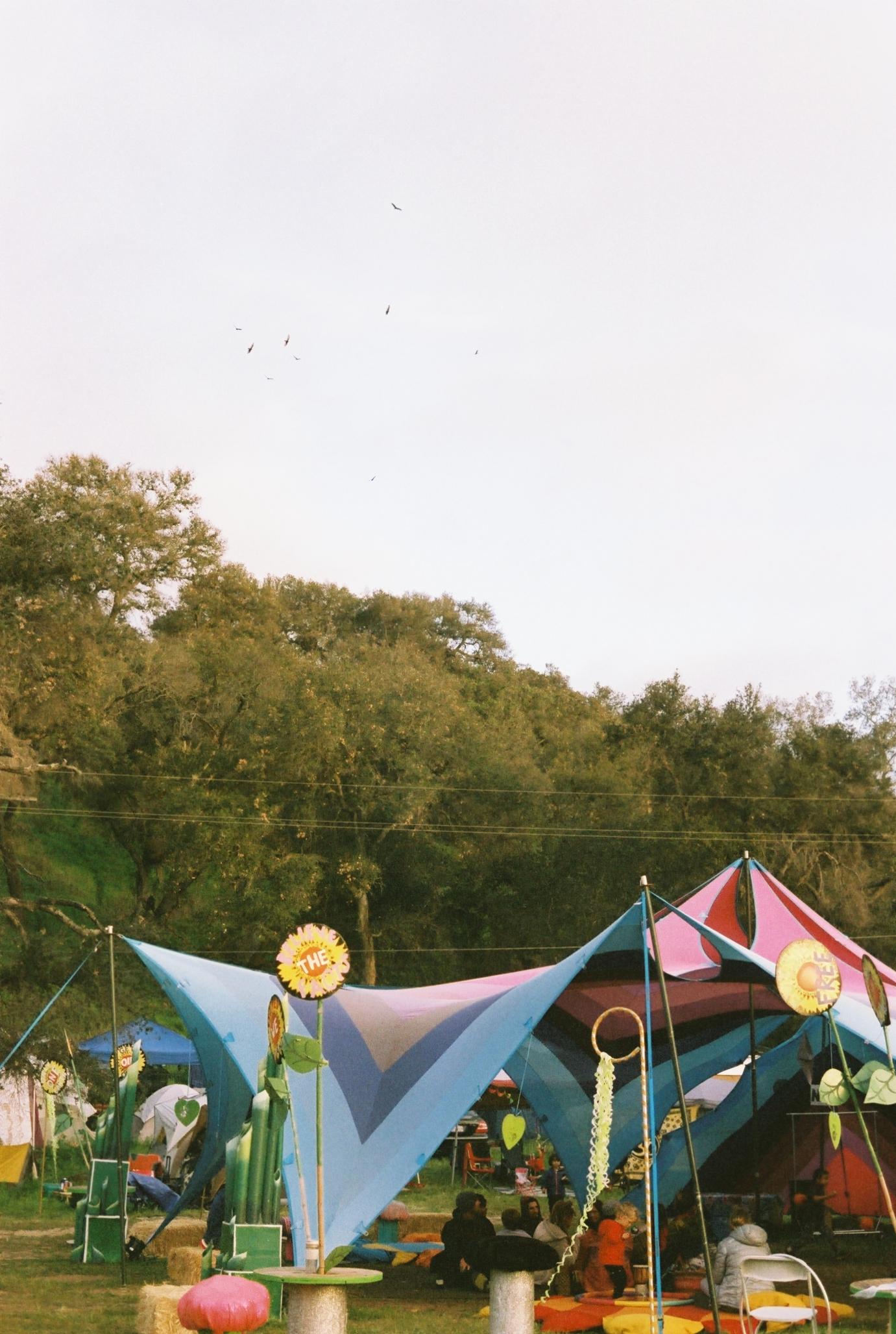 Lucidity Festival 12.jpg