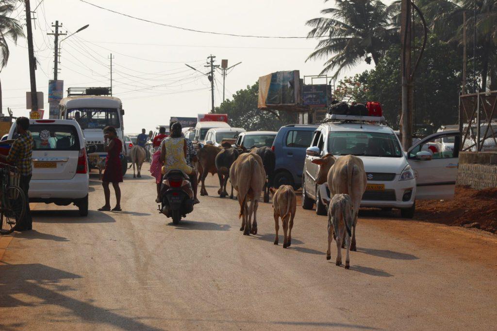 Anjuna road