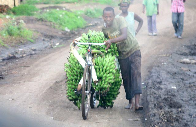 bananas by bike