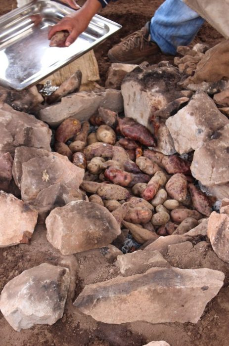 potatoes originated in Peru and there are thousands of varieties