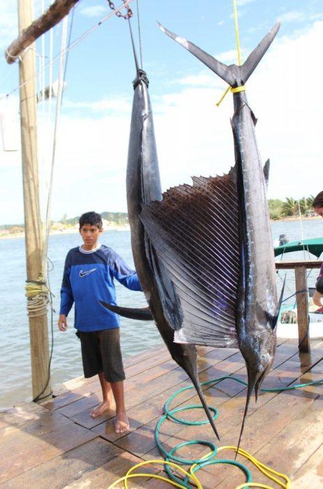 a fishing windfall