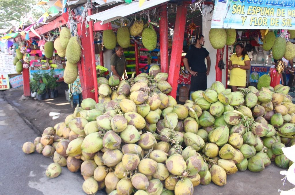 coconuts and jack fruit