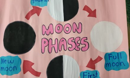 Moon Phases with Cookies