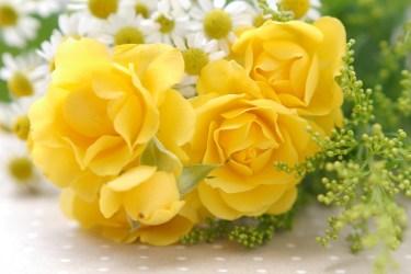 黄色と水色をインテリアに!運気を上げる黄色と水色の取り入れ方