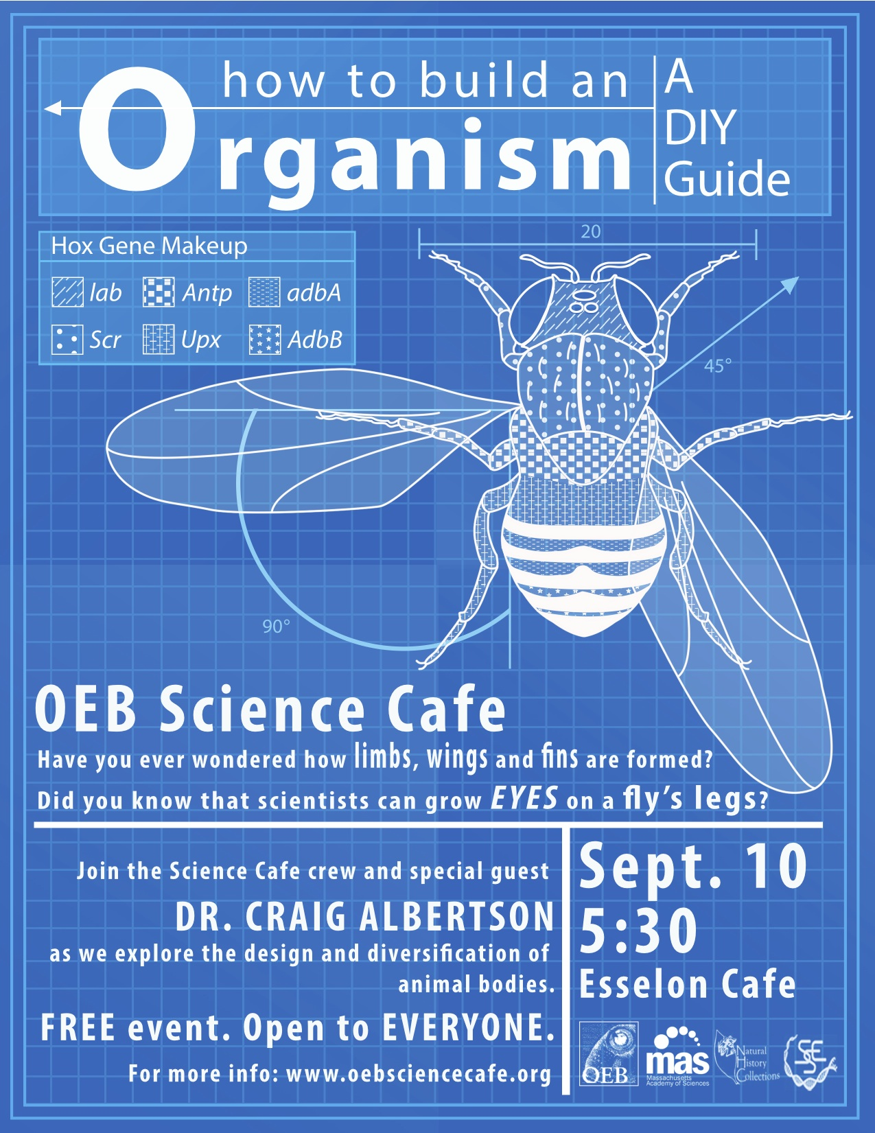 How To Build An Organism A Diy Guide Life Science Cafe