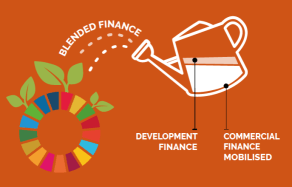 Blended Finance Watering Can