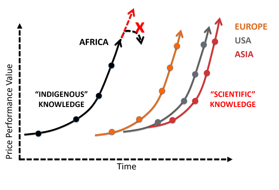 Tracing our roots: Understanding African innovation
