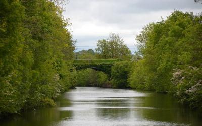 Irland – den Shannon entlang