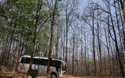 Busreisen – Vor- und Nachteile von Gruppenurlauben