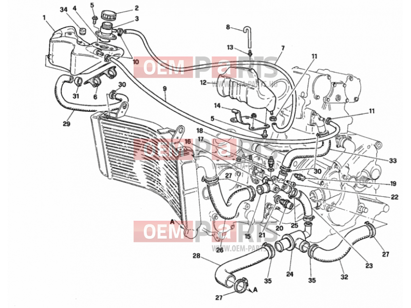 Ducati Superbike 916 SPS COOLING CIRCUIT » UNCLASSIFIED