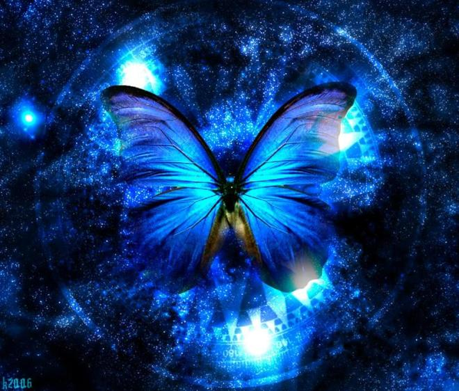 lady-and-the-butterfly-31000