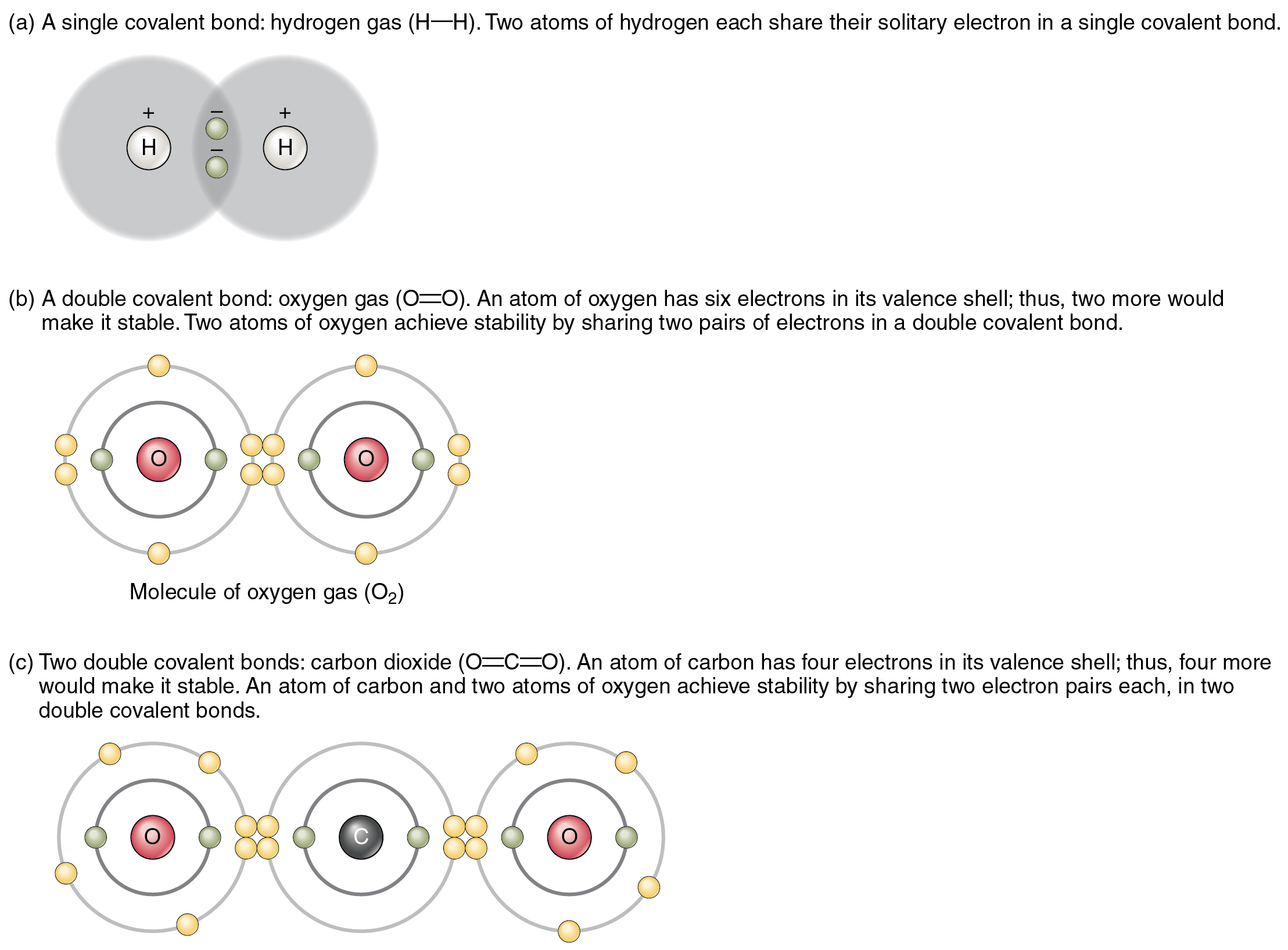 The Top Panel In This Figure Shows Two Hydrogen Atoms