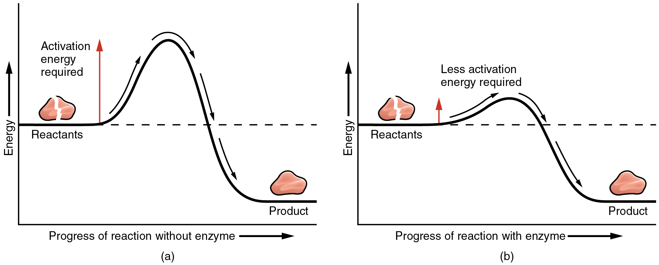 The Left Panel Shows A Graph Of Energy Versus Progress Of