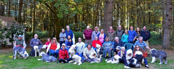 2015 Friends of Old English Sheepdogs Picnic