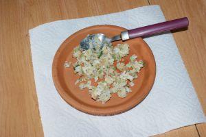 assiette de pâtée pour poussin