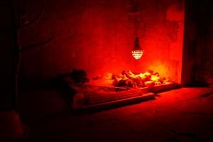Lampe rouge chauffante, sur nid de poussins
