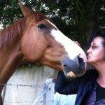 Le cheval Phoenix aux côtés d'Yvonne