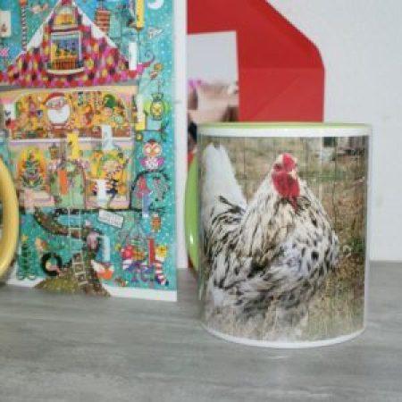 Amandine à l'effigie de nos chers poulets disparus : Caradoc et Mascot'