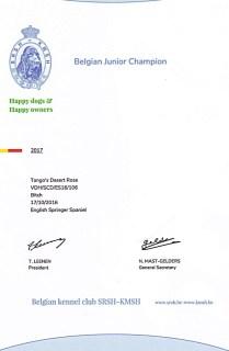 Belgian-Junior-Chmapion