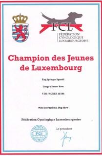 champion-des-jeunes-de Luxemburg