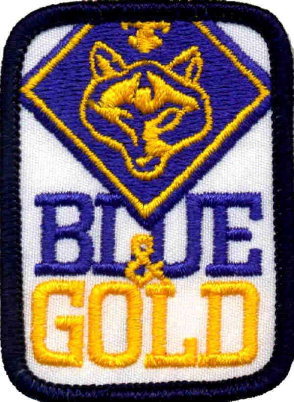 january 2012 'fallon cub scout