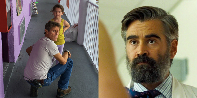 REVIEW: The Florida Project & The Killing of a Sacred Deer