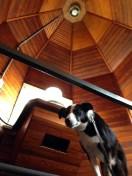 Hank's frist time INSIDE a lighthouse!