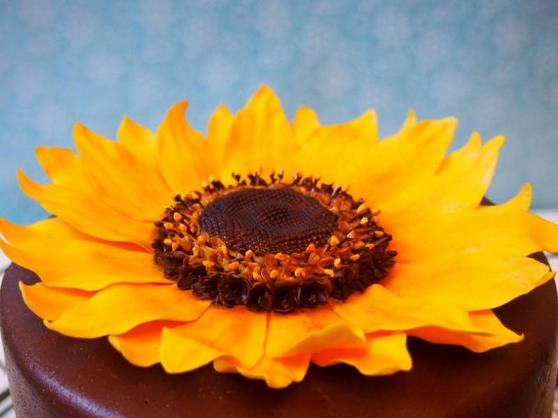 SonnenblumenTorte