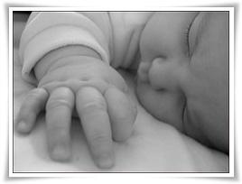tasa natalidad - imagen flickr