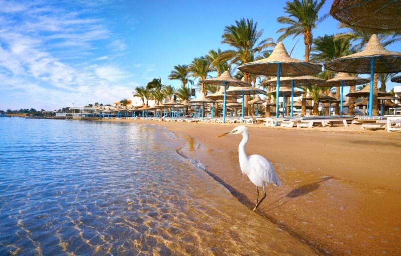All Inclusive in Hurghada, Egipt, ( zbor si cazare 7 nopti)! 256 euro