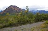 Mountains in Denali National Park