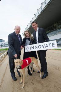 Tipperary greyhound tracks set for digital transformation