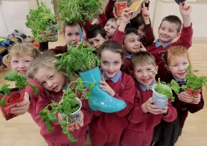 Tipperary Primary Schools Invited To Apply For Free GIY Pack