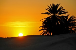 Tunisia-3749 - Here comes the sun.....