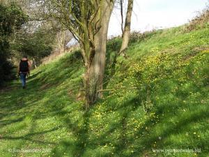 Offa's Dyke at Sedbury Park, Chepstow