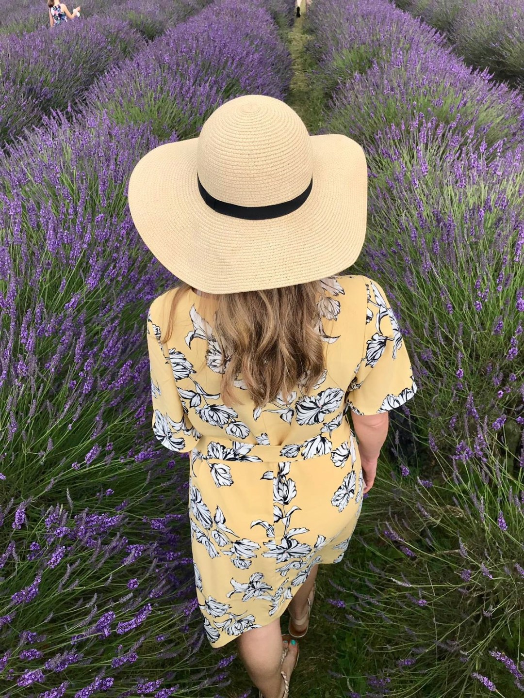 Girl in hat walks through a field of lavender