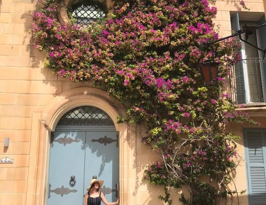 Blue door with purple flowing tree in mdina
