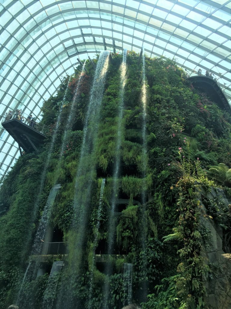 Cloud Forest Dome in Gardens by the Bay Singapore