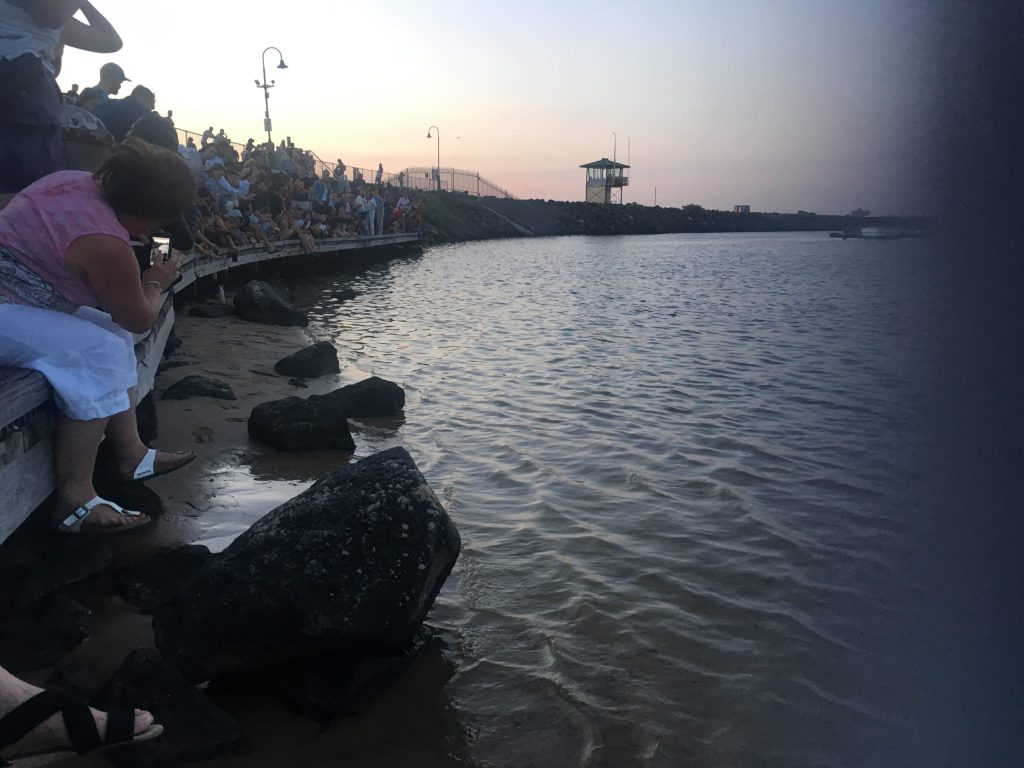 People line the boardwalk in St Kilda Melbourne to watch the fairy penguins
