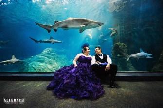 Adventure-Aquarium-Wedding-NJ