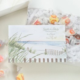6 taffy-save-the-date-4935-insta