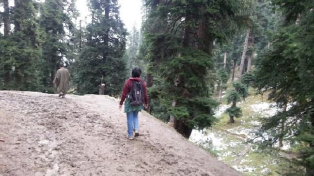 Mud road at the start of trek to Nilnag lake, Kashmir Tourism, Yusmarg, Yousmarg, Doodh Ganga River, Places to visit in Kashmir
