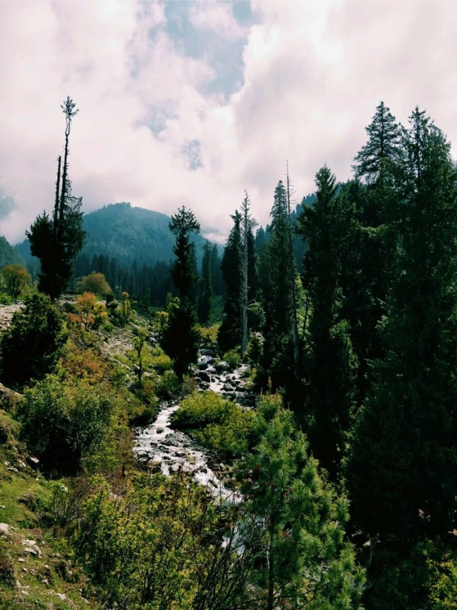 Chatpal and Thimran near Achabal in Kashmir, Offbeat places to visit in Kashmir, Kashmir Tourism
