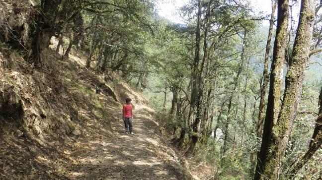 Tango & Cheri Goemba, day hike from Thimphu, Bhutan, Places around Thimphu, Bhutan hikes, Thimphu hikes, Trekking in Bhutan, Monastrery in ThTango & Cheri Goemba, day hike from Thimphu, Bhutan, Places around Thimphu, Bhutan hikes, Thimphu hikes, Trekking in Thimphu, Monasteries in Thimphu Bhutan