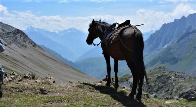 Nichnai Valley to Vishnusar Lake/Kishansar Lake - Kashmir Great Lakes Trek considered to be one of the most beautiful treks in India - Best of Himalayan treks