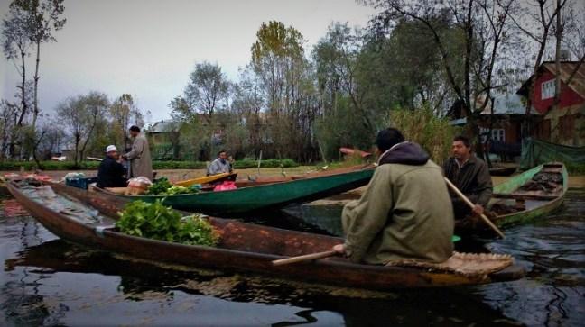 An alluring morning Shikara ride on Dal Lake, Kashmir and a visit to Morning Vegetable Market in Dal Lake.