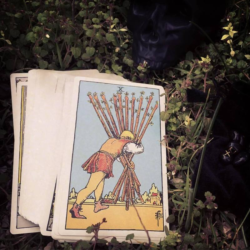 Beginner's Tarot: Your intuitive introspection tool